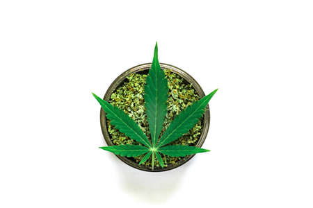 grinder with crushed weed Leaf of cannabis, on a white background top view close weed