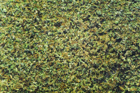 Kief background weed macro top view comfort Stock Photo