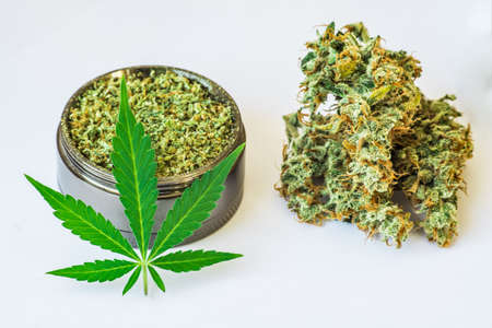 crushed weed, Leaf of cannabis, buds of marijuana, joint and a grinder with on a white background comfort