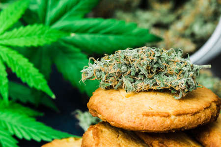 Cookies with cannabis and buds of marijuana on the table.