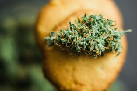 Close up Cookies with cannabis and buds of marijuana on the table. Stock Photo
