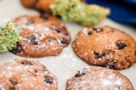 Cookies with cannabis and buds of marijuana on the table. Concept of cooking with cannabis herb. Treatment of medical marijuana for use in food On a white background CBD use