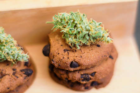 Cookies with cannabis and buds of marijuana on the table. Concept of cooking with cannabis herb. Treatment of medical marijuana for use in food, On a black background CBD use