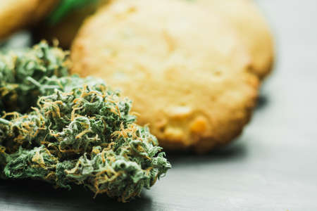 Cookies with cannabis and buds of marijuana on the table. A can of cannabis buds Concept of cooking with cannabis herb. Treatment of medical marijuana for use in food, use CBD Stock Photo