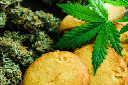Cookies with cannabis leaves and buds of marijuana on the table. A can of cannabis buds Concept of cooking with cannabis herb. Treatment of medical marijuana for use in food, use CBD Stock Photo