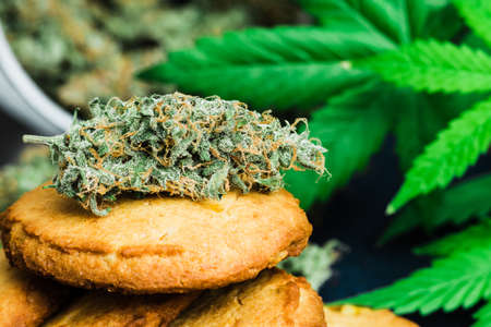 Cookies with cannabis and buds of marijuana on the table. A can of cannabis buds Concept of cooking with cannabis herb. Treatment of medical marijuana for use in food CBD Stock Photo