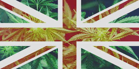 Cannabis Legalization Procedure in the UK. The decriminalization of marijuana in Great Britain. Medical Use of Cannabis in England .