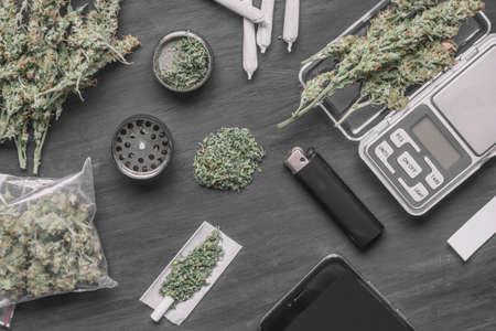 Cones of marijuana flowers on scales, grinder hemp Stock Photo