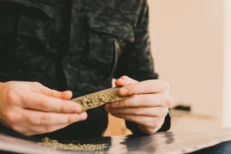 Close up of addict lighting up marijuana Blunt with lighter. Close up. Man rolling a marijuana Blunt Drug use. Man preparing and rolling marijuana cannabis Blunt. Drugs narcotic concept.