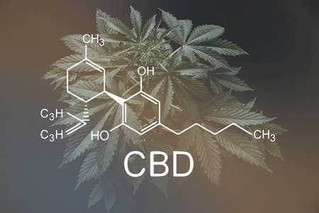 CBD formula. cannabinoids and health, medical marijuana, Hemp industry, despancery business. Growing Marijuana, CBD and THC elements in Cannabis, Foto de archivo - 121495447