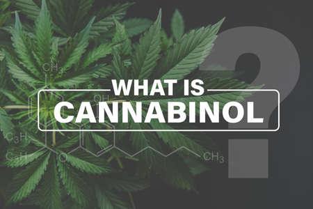 Cannabidiol CBD formula, background green, CBD, marijuana leaves, marijuana vegetation plants hemp cultivation cannabis, Growing cannabis indica,