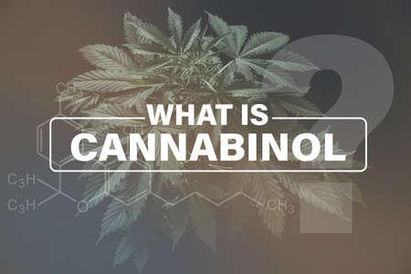 Cannabidiol CBD formula, marijuana vegetation plants hemp cultivation cannabis, marijuana leaves, Growing cannabis indica, background green, 写真素材 - 121496601