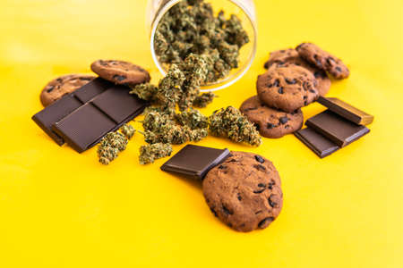 Cannabis CBD herb Chocolate and Cookies. Cookies and Chocolate with cannabis and buds of marijuana on the table. Treatment of medical marijuana for use in food, yellow background.
