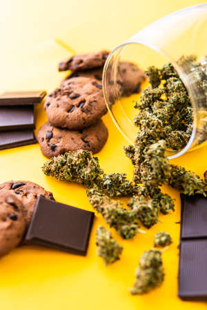 Cannabis CBD herb Chocolate and Cookies. Treatment of medical marijuana for use in food, yellow background. Cookies and Chocolate with weed and buds of marijuana on the table.