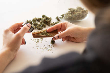 Cannabis use concept. Woman preparing and rolling marijuana cannabis joint. Close up of marijuana blunt with grinder. Woman rolling a marijuana blunt on white background. Banco de Imagens