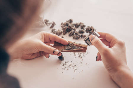 Woman rolling a marijuana blunt on white background. Woman preparing and rolling marijuana cannabis joint. Close up of marijuana blunt with grinder. Cannabis use concept.
