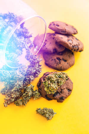 Treatment of medical marijuana for use in food, yellow background. Cookies with cannabis and buds of marijuana on the table. Cannabis CBD herb Cookies. Vertical shot light leaks