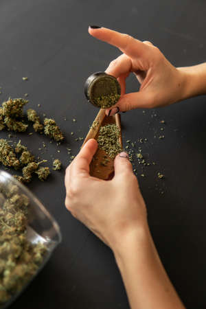 Woman preparing and rolling marijuana cannabis joint. Close up of marijuana blunt with grinder. Marijuana use concept. Woman rolling a marijuana joint.