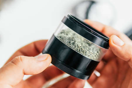 Weed grinder Fresh marihuana in hand. Cannabis buds on white wood background. Copy space. Close up. Standard-Bild