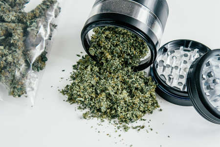 Weed grinder Fresh marihuana. Cannabis buds on white