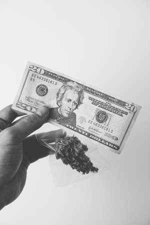 Cannabis money black market. White background. Cannabis in Economics. Money weed. Sativa medical health.
