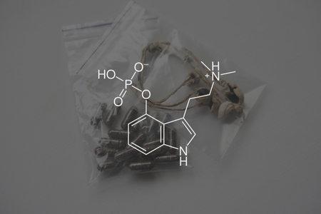 psilocybin formula. Legalization Medical. Psychoactive natural drug. Recreational use of psilocybin mushrooms. Medical psilocybin on the health of Mental health. 免版税图像
