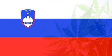 leaf of cannabis marijuana on the flag of Slovenia. Cannabis legalization in the Slovenia. Medical cannabis in the Slovenia. Weed Decriminalization in Slovenia. 免版税图像