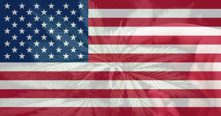 leaf of cannabis marijuana on the flag of USA. Cannabis legalization in the USA. Medical cannabis in the America. Weed Decriminalization in US. 免版税图像