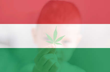 Cannabis legalization in the Hungary. Weed Decriminalization in US. Medical cannabis in the Hungary. leaf of cannabis marijuana on the flag of Hungary. 免版税图像
