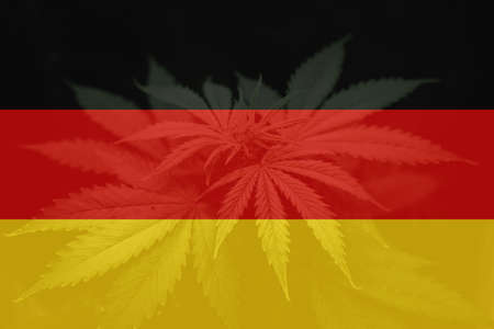 Cannabis legalization in the Germany. Medical cannabis in the Germany. leaf of cannabis marijuana on the flag of Germany. Weed Decriminalization in Germany.