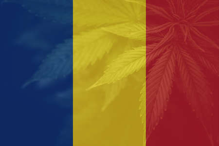 marijuana on the flag of Romania. Weed Decriminalization in Romania. Cannabis legalization in the Romania. Medical cannabis in the Romania. leaf of cannabis