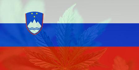 Medical cannabis in the Slovenia. Weed Decriminalization in Slovenia. leaf of cannabis marijuana on the flag of Slovenia. Cannabis legalization in the Slovenia.