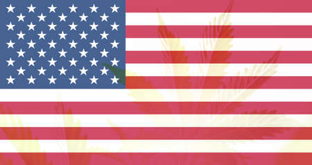 Cannabis legalization in the USA. Weed Decriminalization in US. Medical cannabis in the America. leaf of cannabis marijuana on the flag of USA.