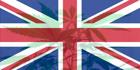 Cannabis legalization in the United Kingdom. Weed Decriminalization in England. Medical cannabis in the UK. leaf of cannabis marijuana on the flag of great britain.