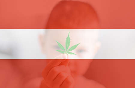 Cannabis legalization in the Avstriya. Medical cannabis in the Avstriya. leaf of cannabis marijuana on the flag of Avstriya. Weed Decriminalization in Avstriya. 免版税图像