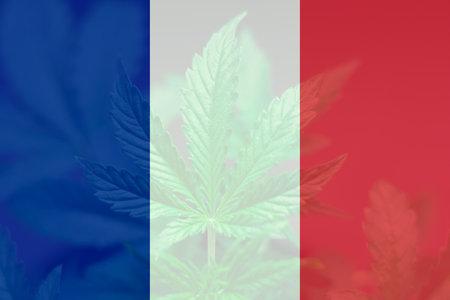 Medical cannabis in the France. Decriminalization Weed in France. leaf of cannabis marijuana on the flag of France. Cannabis legalization in the France. 免版税图像