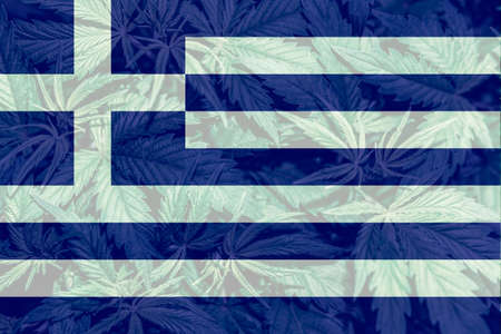Cannabis legalization in the Greece. Weed Decriminalization in Greece. Medical cannabis in the Greece. leaf of cannabis marijuana on the flag of Greece.