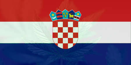 Medical cannabis in the Croatia. Weed Decriminalization in Croatia. Cannabis legalization in the Croatia. leaf of cannabis marijuana on the flag of Croatia.