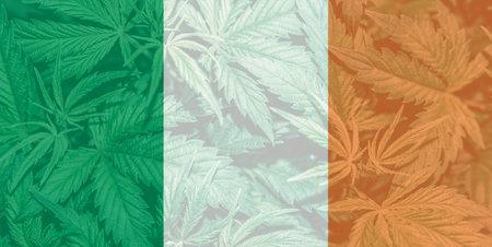 Medical cannabis in the Ireland. leaf of cannabis marijuana on the flag of Ireland. Weed Decriminalization in Ireland. Cannabis legalization in the Ireland.