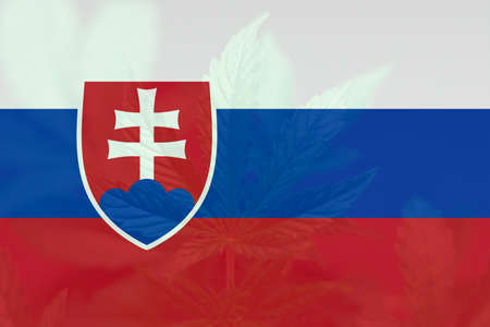 Weed Decriminalization in Slovakia. Cannabis legalization in the Slovakia. Medical cannabis in the Slovakia. leaf of cannabis marijuana on the flag of Slovakia.