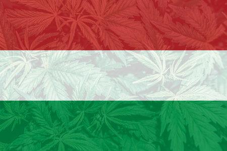 Medical cannabis in the Hungary. Cannabis legalization in the Hungary. Weed Decriminalization in US. leaf of cannabis marijuana on the flag of Hungary. 免版税图像
