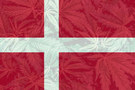 leaf of cannabis marijuana on the flag of Denmark. Weed Decriminalization in Denmark. Cannabis legalization in the Denmark. Medical cannabis in the Denmark.