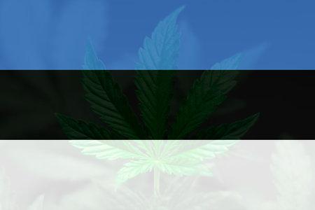 Cannabis legalization in the Estonia. Medical cannabis in the Estonia. Weed Decriminalization in Estonia. leaf of cannabis marijuana on the flag of Estonia.