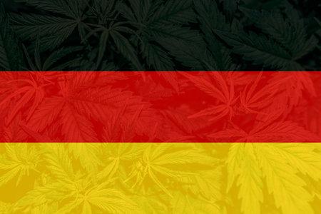 Weed Decriminalization in Germany. Cannabis legalization in the Germany. Medical cannabis in the Germany. leaf of cannabis marijuana on the flag of Germany. 免版税图像