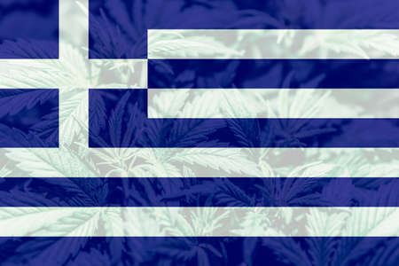 leaf of cannabis marijuana on the flag of Greece. Cannabis legalization in the Greece. Weed Decriminalization in Greece. Medical cannabis in the Greece.