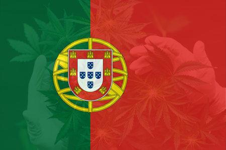 Weed Decriminalization in Portugal. Medical cannabis in the Portugal. Cannabis legalization in the Portugal. leaf of cannabis marijuana on the flag of Portugal.