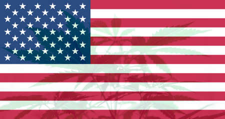 Medical cannabis in the America. leaf of cannabis marijuana on the flag of USA. Cannabis legalization in the USA. Weed Decriminalization in US.