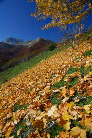 molise: Autumn in the national park Abruzzo Lazio Molise Stock Photo