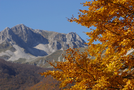 lazio: Autumn in the national park Abruzzo Lazio Molise Stock Photo