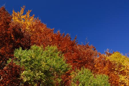 apennines: Autumn in the national park Abruzzo Lazio Molise Stock Photo